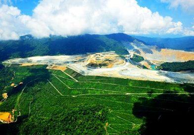 Lebih dari 7 Ribu Hektar Tambang akan Direklamasi Sepanjang 2019