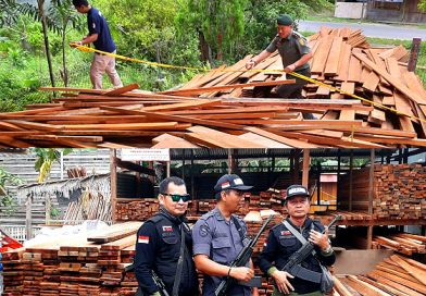 Tim gabungan KLHK dan Polres Nunukan Amankan Ribuan Potong Kayu Olahan Ilegal