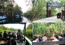 Pusat Rehabilitasi Orang Utan di TNTP, Menarik Atensi Wisatawan