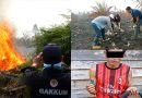 KLHK Tindak Tegas Pelaku Pembakaran 274 Hektar Lahan di Kalbar