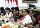 Jokowi Tegaskan Tidak Ada Skema Pinjaman dalam Pembangunan IKB
