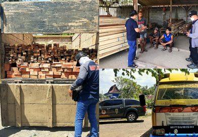 Cukong Kayu Ilegal di Banyuwangi Ditangkap Gakkum KLHK