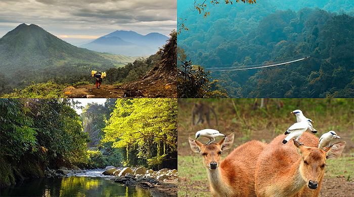 KLHK Buka Kawasan Taman Nasional, Taman Wisata Alam dan Suaka Margasatwa untuk Kunjungan Wisata Alam