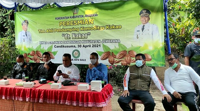 Tingkatkan Produktivitas, Bupati Jembrana Resmikan Tim Ahli Pendamping Komoditas Kakao